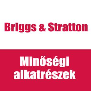 Briggs & Sratton alkatrész
