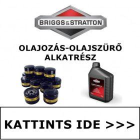BRIGGS & STRATTON OLAJOZÁS - OLAJSZŰRŐ ALKATRÉSZEK