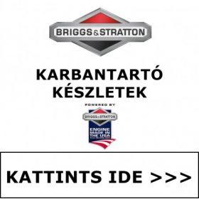 BRIGGS & STRATTON KARBANTARTÓ KÉSZLETEK