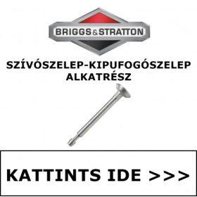 BRIGGS & STRATTON SZELEP - SZÍVÓ SZELEP - KIPUFOGÓSZELEP ALKATRÉSZEK