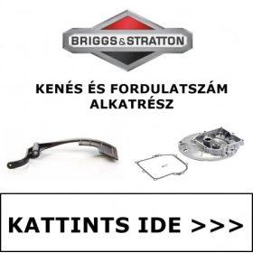 BRIGGS & STRATTON KENÉS ÉS FORDULATSZÁM SZABÁLYOZÁS ALKATRÉSZEK