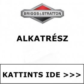 BRIGGS & STRATTON ALKATRÉSZ