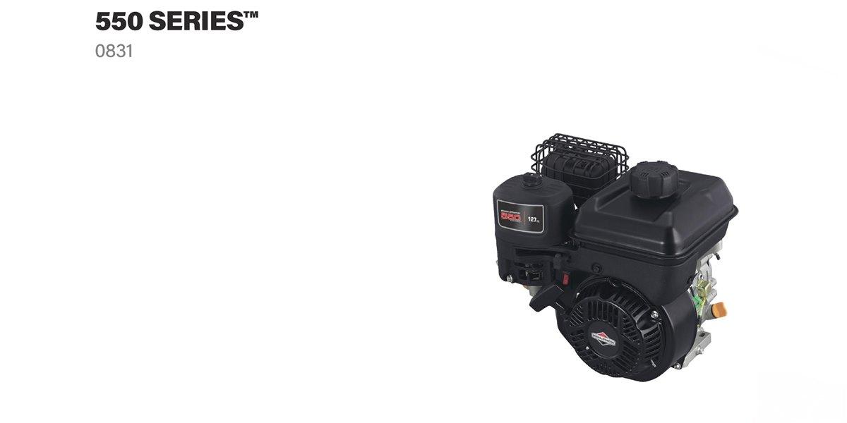 Briggs & Stratton® motorolaj - 4 ütemű motorokba  - 0,6 liter - 0100005E