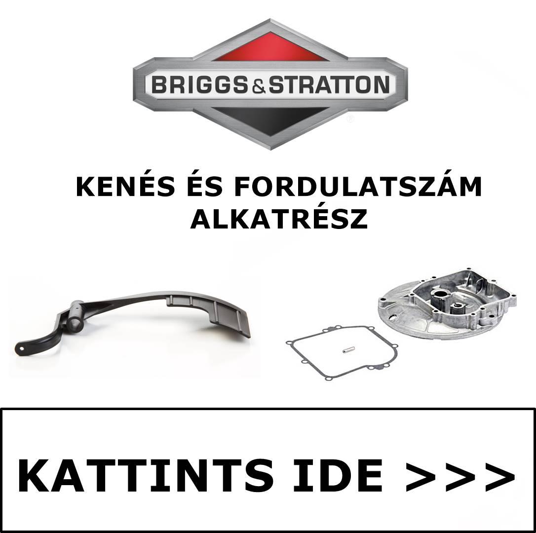 Briggs & Stratton fordulatszám alkatrész