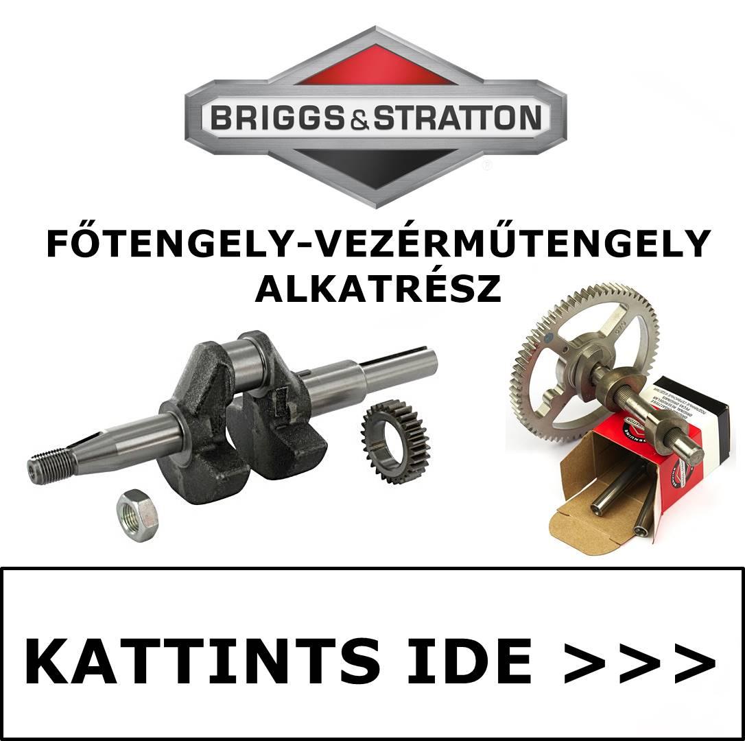 Briggs & Stratton főtengely vezérműtengely alkatrész