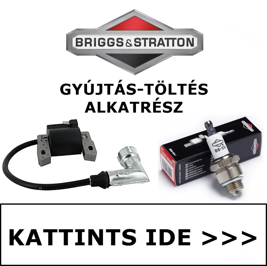 Briggs & Stratton gyújtás töltés alkatrész