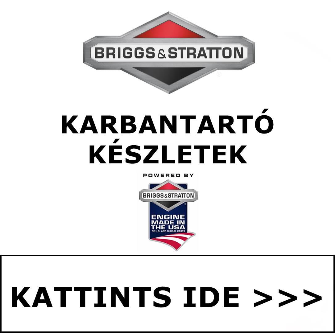 Briggs & Stratton karbantartó készlet