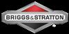 Briggs & Stratton® 498809