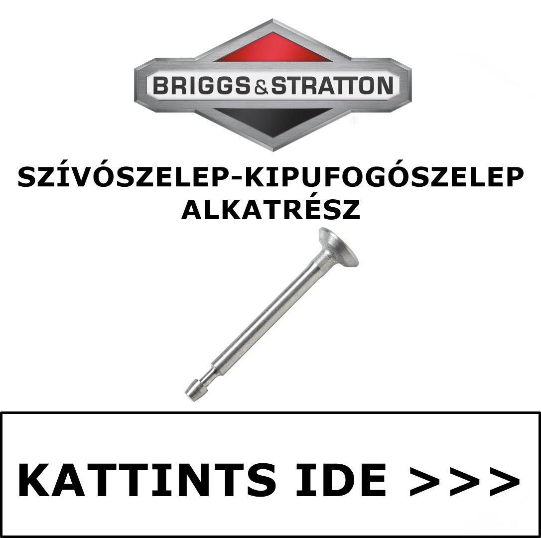 Briggs & Stratton szelep szívó szelep kipufogószelep alkatrész