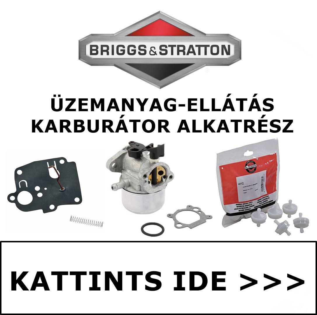 Briggs & Stratton üzemanyag ellátás karburátor alkatrész