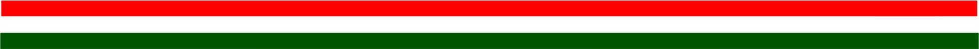 Magyar zászló Webbizi