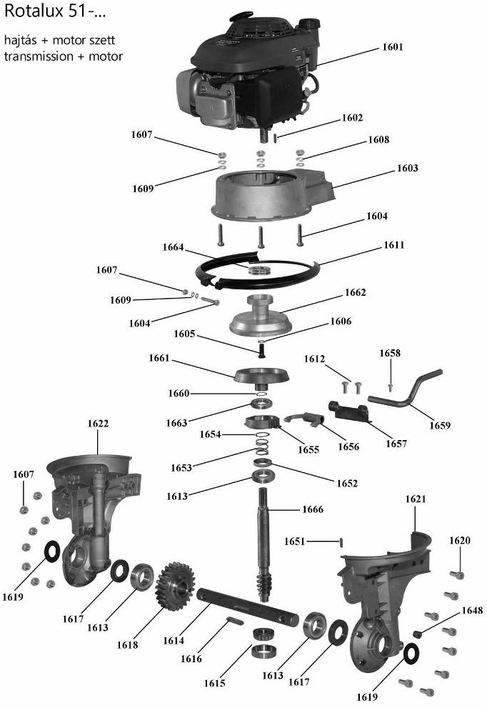 Agrimotor® 55045053 kuplung felső Rotalux51 - Briggs & Stratton®  - rotációs kapálógép - 1662B - eredeti minőségi alkatrész*