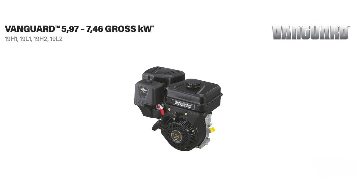 Briggs & Stratton® olajmérő pálca+tömítés - 798503 - plug-dipstick / fill